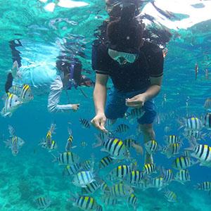 ACEフィリピンセブ島 ボランティア・スタディツアー アクティビティ体験